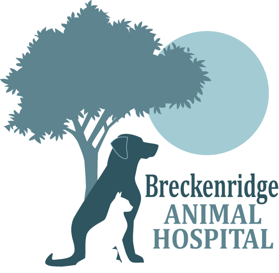 Breckenridge Animal Hospital